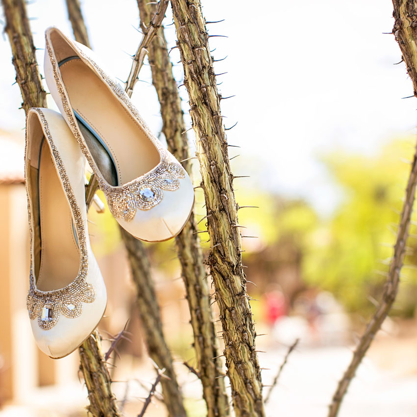 Wedding Shoes on Cactus Branch