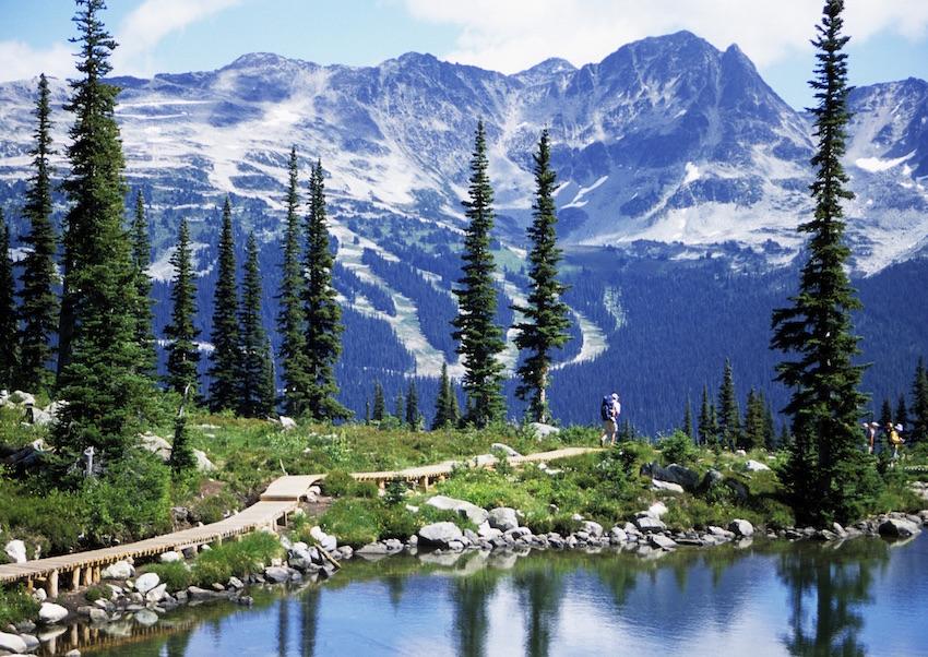 Hiking Trails Westin Resort Whistler