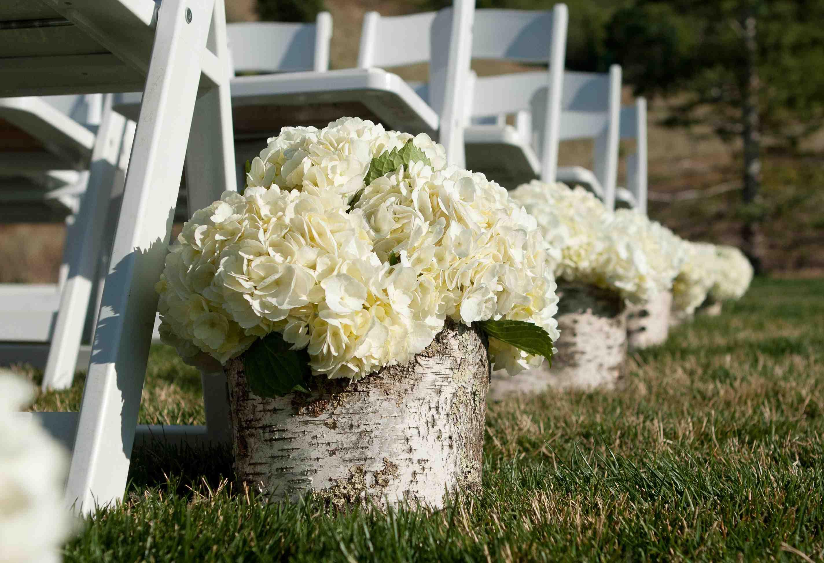 White hydrangea in birch wood boxes