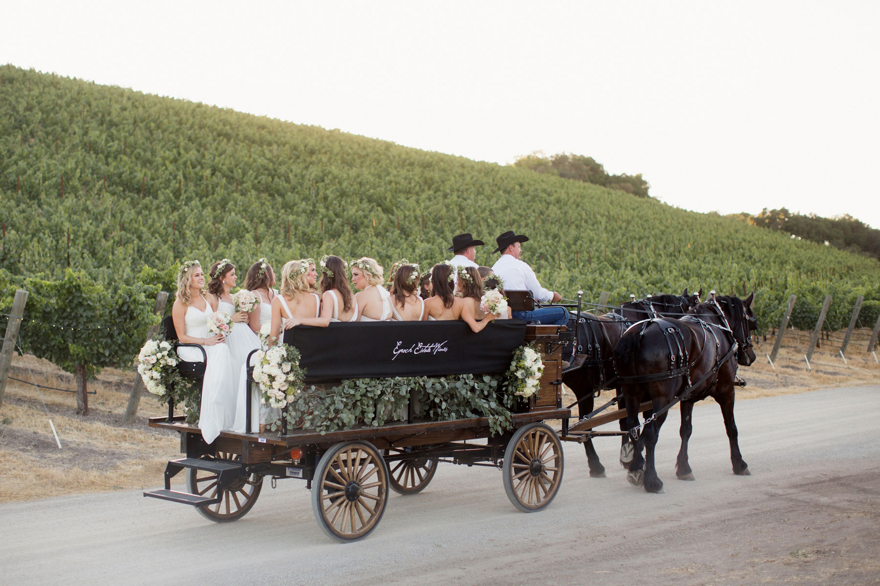 Horse drawn carriage wedding party transportation