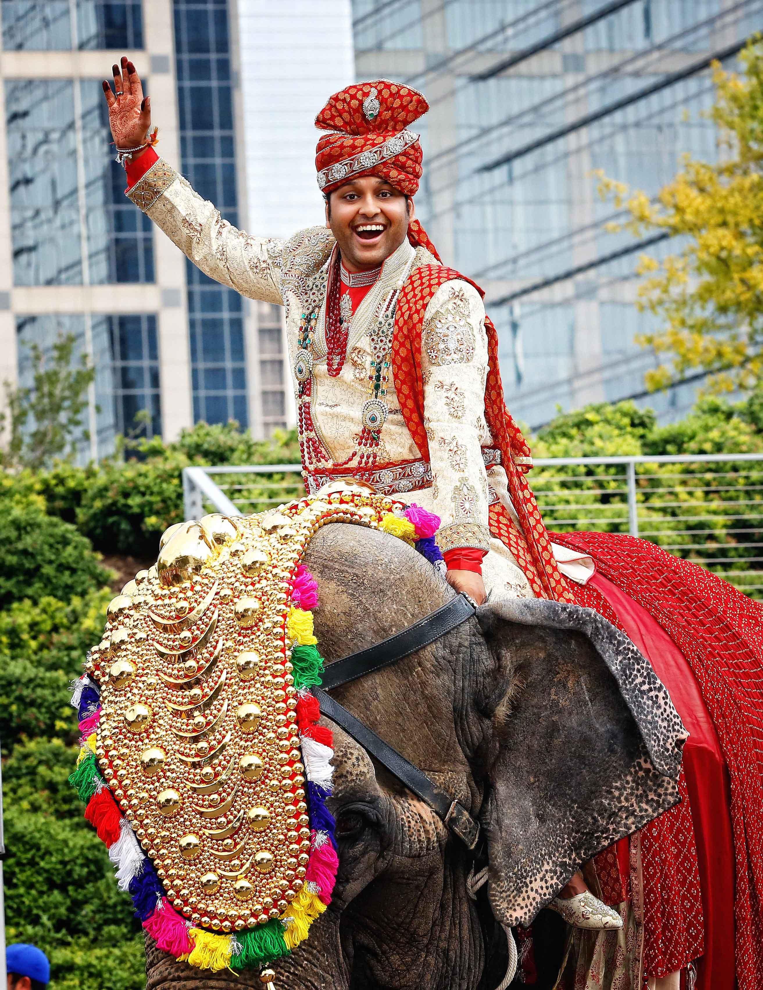 Groom on top of elephant Indian wedding