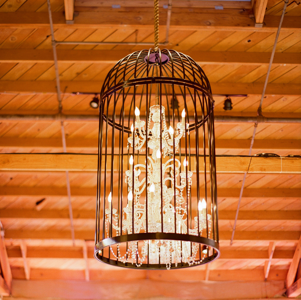 chandelier in birdcage