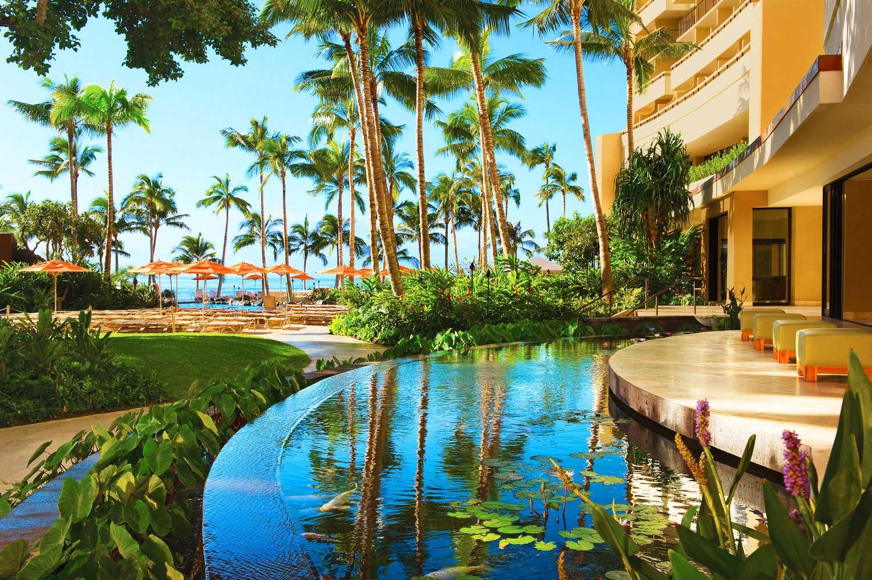 Sheraton Waikiki lily pond
