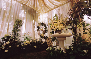 white-flowers-and-plants-under-white-draping