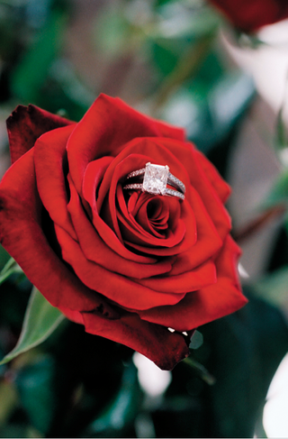 engagement-ring-with-pave-diamonds-on-red-rose