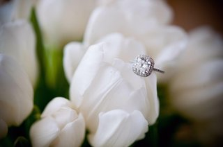 cushion-cut-diamond-with-halo-and-pave-setting-on-white-tulip