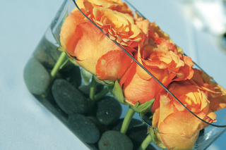 oval-vase-with-orange-roses-submerged-in-water