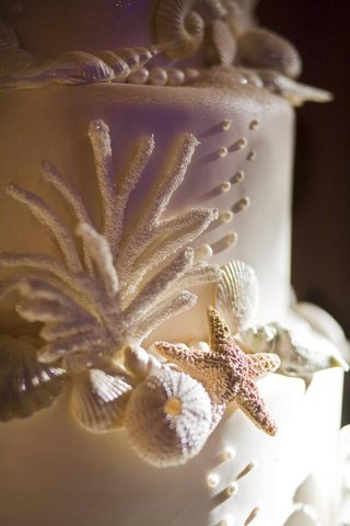 white-wedding-cake-with-seashell-and-starfish-decorations