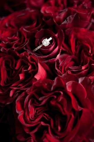 round-cut-diamond-ring-on-bed-of-red-roses