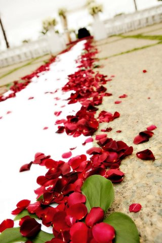 red-rose-petals-covering-white-ceremony-aisle