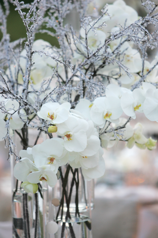 icy-winter-themed-wedding-centerpieces-and-orchids