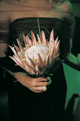 pink-protea-bouquets-for-bridesmaids