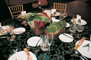 textured-tablecloth-and-succulent-centerpiece