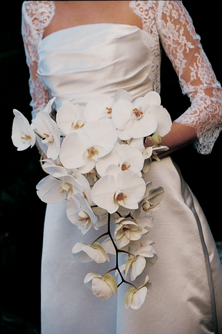 bride-carries-a-trailing-bouquet-of-white-orchids