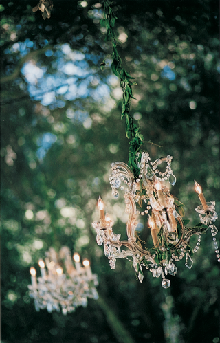 chandelier-wrapped-in-garland-hanging-from-tree