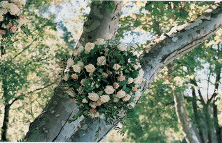 ball-of-flowers-and-verdure-hanging-from-tree