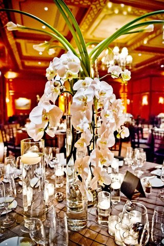cascading-orchids-and-long-stemmed-lilies