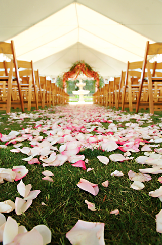 pink-petals-covered-grass-aisle-leading-to-altar