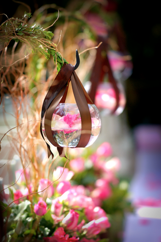 pink-orchid-floats-in-glass-bowl-hung-from-hook-with-brown-ribbon