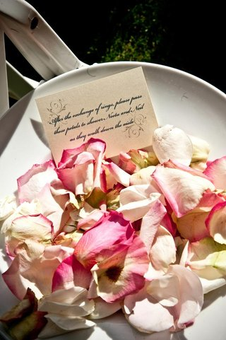 pink-and-ivory-roses-to-toss-after-ceremony