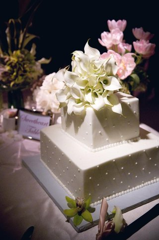 white-two-layer-wedding-cake-with-dots-and-calla-lily-flowers