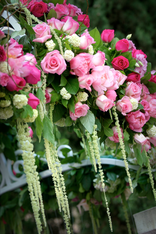 pink-roses-and-greenery-arranged-on-wrought-iron-canopy