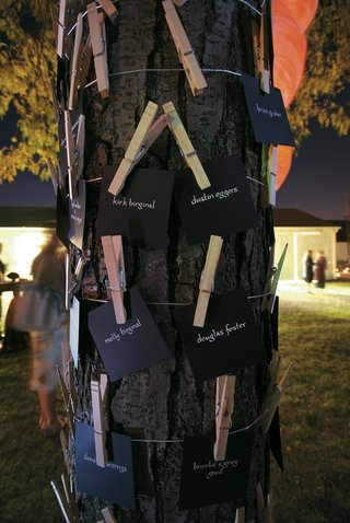 seating-cards-on-clothespins-tied-to-tree-trunk
