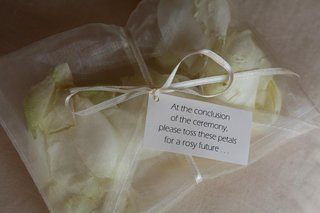 ivory-roses-in-sheer-bag-tied-with-ribbon