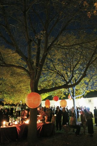 evening-cocktail-hour-under-trees-with-orange-paper-lanterns