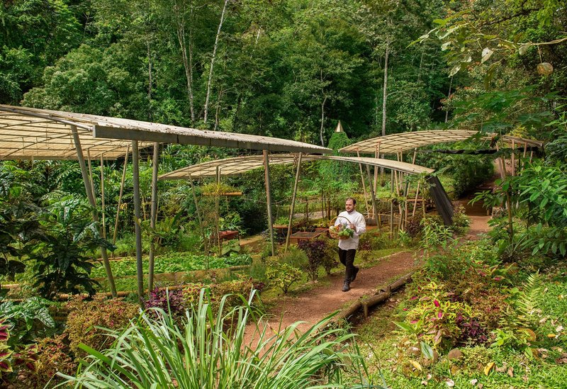 ORIGINS Luxury Lodge - Farm to Table Dining with Chef
