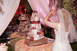 five-tier-pink-wedding-cake-decorated-with-fondant-draping-red-butterflies-and-roses