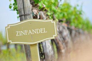 wine-vineyard-signage-for-zinfandel-grapes
