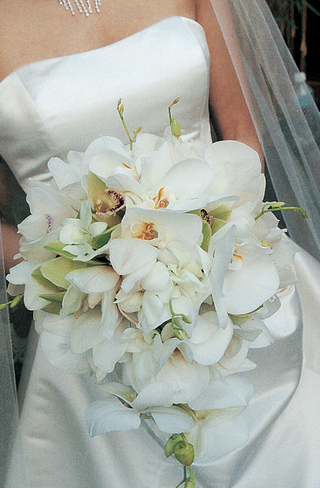 brides-bouquet-of-white-and-green-orchids