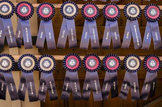 blue-and-pink-horse-show-ribbon-seating-card-alternative