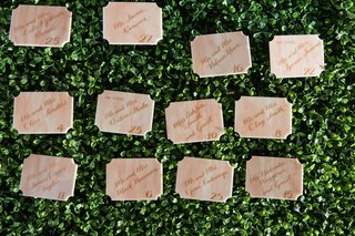 marble-escort-card-die-cut-with-calligraphy-on-greenery-hedge-wall-reception
