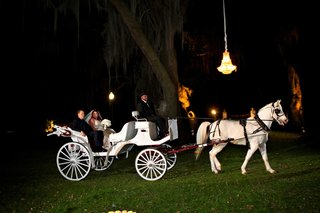 outdoor-southern-wedding-at-houmas-house-plantation-with-grand-entrance-on-horsedrawn-carriage