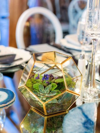 small-geometric-terrarium-with-gold-edged-succulent-moss-purple-bloom