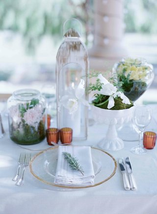 fresh-herb-sprig-on-place-setting-and-cattleya-orchid-in-dome