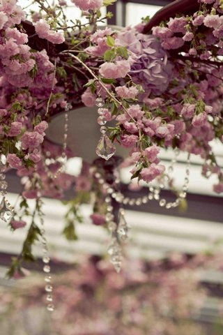 crystal-strands-hanging-from-purple-and-pink-flower-vines