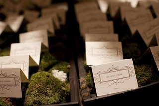 wood-box-and-moss-seating-card-display