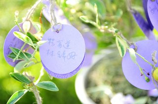 purple-circle-stationery-hanging-from-tree-with-taiwanese-and-korean-writing