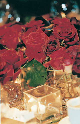 candlelight-in-front-of-fresh-red-roses