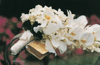 white-orchid-and-stephanotis-wedding-flowers