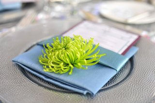 green-spider-mum-on-top-of-blue-napkin