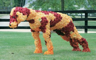 four-legged-animal-sculpture-made-of-red-yellow-and-orange-flowers