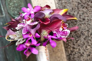 purple-orchids-and-succulents