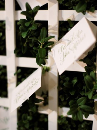 wedding reception garden wedding ideas trellis hedge wall escort cards green calligraphy