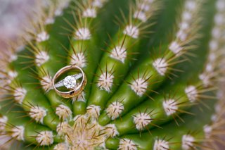 engagement-ring-and-gold-wedding-band-on-top-of-a-cactus-in-arizona