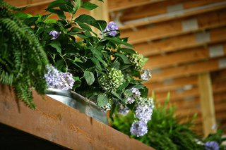 barn-wedding-ceremony-with-ferns-greenery-purple-and-green-hydrangeas-in-tin-tub