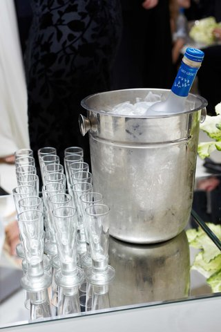 chilled-grey-goose-vodka-and-shot-glasses